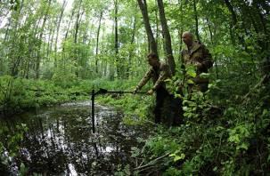Поднятые на Смоленщине части истребителя полка «Нормандия-Неман» анализируют военные эксперты