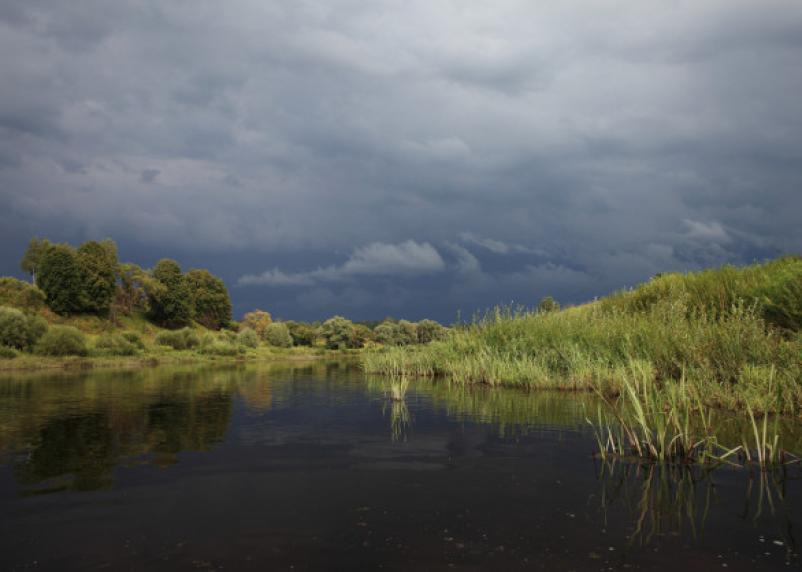 Калужские заводы отравили приток Угры