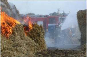 Фермеры в панике. На Смоленщине сено горит тоннами