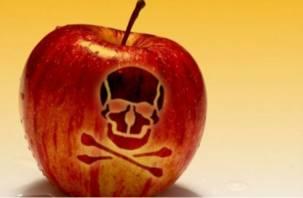 В Роскачестве установили, какие яблоки «напичканы» пестицидами