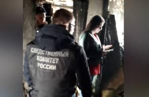Смоленские следователи проводят проверку по факту смертельного пожара