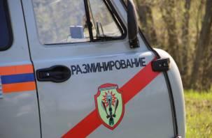 В Смоленской области нашли авиабомбу