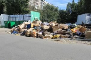«А они вообще существуют?». Смоленский подрядчик устроил в Саратове мусорный коллапс