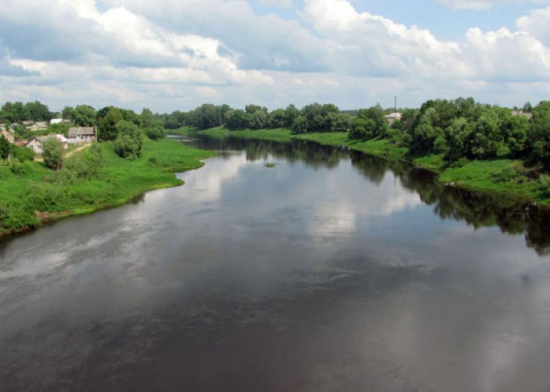 «Погибли сестра и два брата». В Смоленской области утонули трое детей