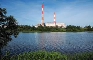 В Смоленскев водоеме ТЭЦ-2 утонул мужчина
