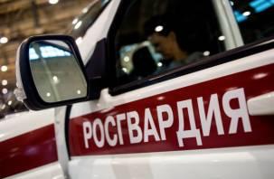 В Смоленской области сотрудники Росгвардии поймали магазинных грабителей