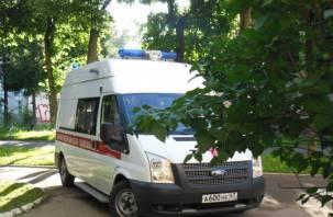 В Смоленской области автоледи протаранила дорожный знак и попала в больницу