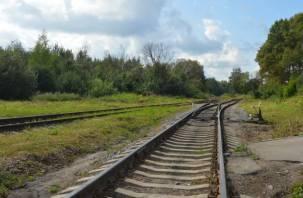 В Вязьме поймали вора железнодорожных путей