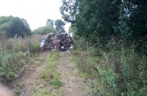 В Смоленской области неизвестные перекрыли дорогу в деревню мусорными кучами