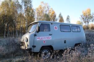 В Смоленской области «буханка» вылетела в кювет. Водитель госпитализирован