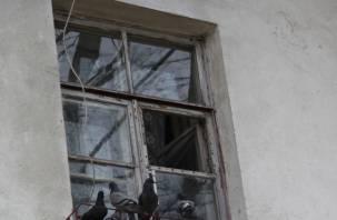 Через окно. Домушник несколько дней выносил имущество смолянина