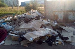 «Опять развели крыс». Рославльчане жалуются на свалки возле мусорных контейнеров