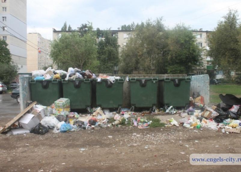 Улицы Энгельса тонут в мусоре. Смоленский подрядчик не справился с работами по вывозу отходов