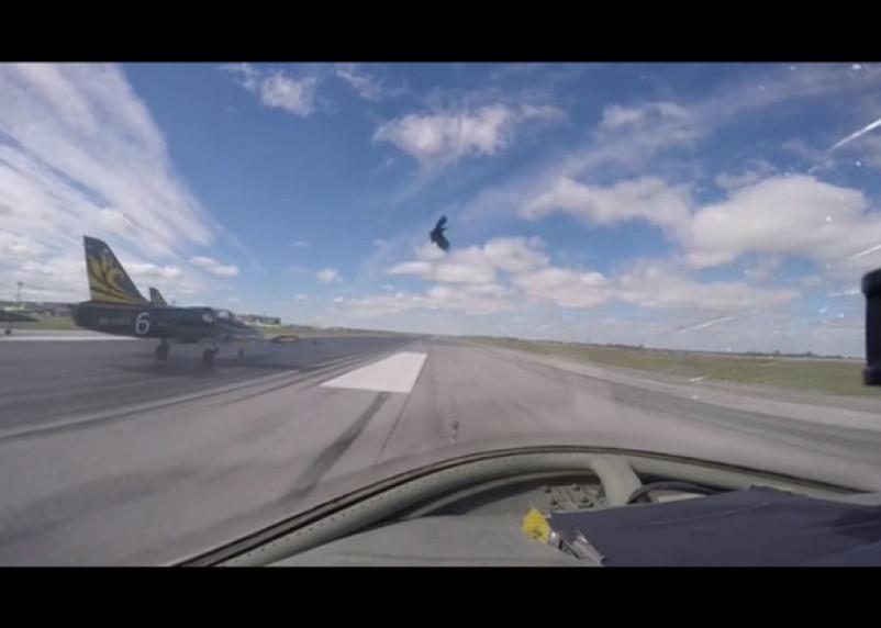 Смоленские пилоты подверглись крылатой атаке в Новосибирске