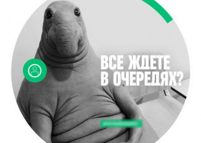 За «кражу» Ждуна «Мегафон» заплатит 8 миллионов штрафа
