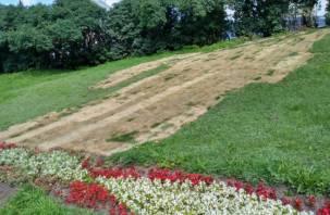 «Трудная дорога к храму»: на месте раскопок «Квадры» вырос засохший газон