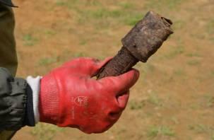 В Смоленском районе нашли гранату