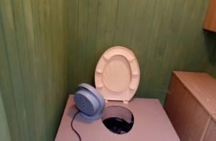 Медведев накажет губернаторов за школьные туалеты без отопления. На Смоленщине их три