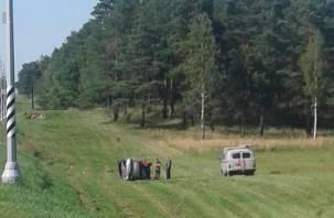 Подробности ДТП в Рославльском районе. Водитель «Рено» госпитализирован