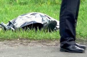 В Смоленске мужчина убил прохожего, который задел его плечом