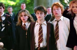 Смоленских школьников предложилиодевать в стиле «Гарри Поттера»