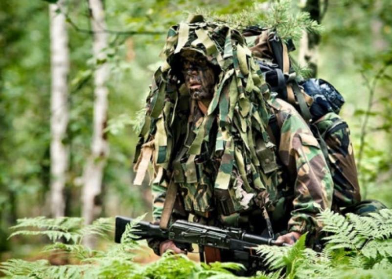Разведчики будут тренироваться устраивать диверсии в Смоленской области