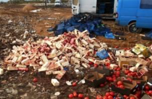 На Смоленщине тонны малины, клубники и томатов закопали в землю