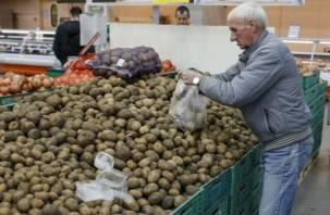 В сетевых магазинах продают плохой картофель