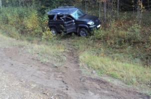 На смоленской трассе в аварии пострадал маленький ребенок