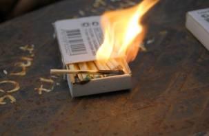 Из-за чего чаще всего происходят пожары на Смоленщине