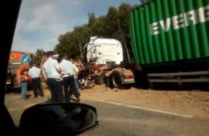 Не стой! На федеральных дорогах в Смоленской области гибнут люди
