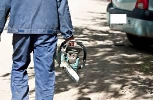 Смолянин стащил бензопилу из чужой машины