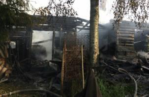 Под Смоленском в пожаре заживо сгорели два человека