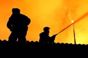 Огонь чуть не перекинулся на дом. Смоленские пожарные тушили баню