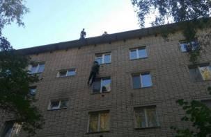 Как жителей многоэтажки в Смоленске от ос спасали