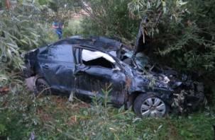 Смоленский водитель съехал в кювет и «встретился» с деревом