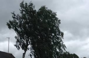 Смоляне получили смс о штормовом предупреждении