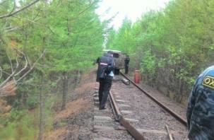 Трое смолян и иностранец спилили железнодорожные рельсы на металлолом