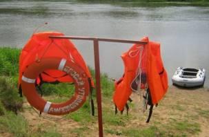 В Смоленской области подвели итоги купального сезона: погибло 24 человека