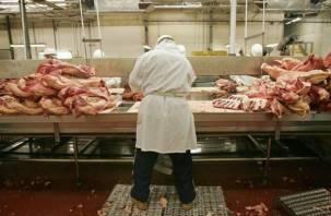 Смоленское предприятие производит мясную продукцию в антисанитарных условиях
