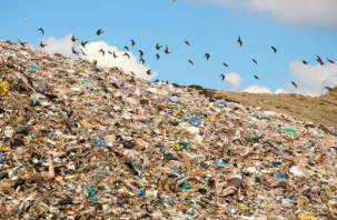 На Смоленщине появятся мобильные мусоросортировочные комплексы?
