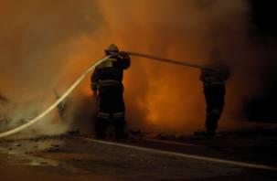 В Смоленске ночью сгорел автомобиль