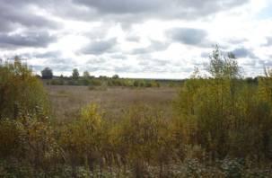 На Смоленщине зарастают сотни гектаров сельскохозяйственных участков