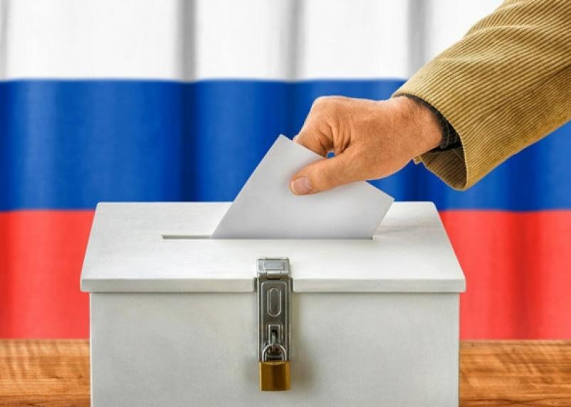 Голосование по поправкам в Конституцию начнут проводить онлайн