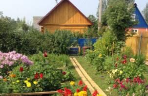«Единая Россия» хочет обложить налогами дачи и огороды