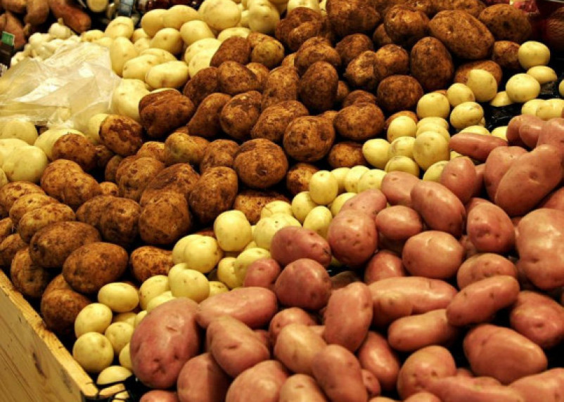 В России предложили продавать картофель «экономкласса»