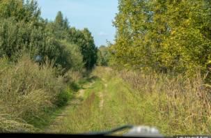Россияне смогут ходить на охоту с луком и арбалетом