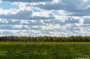 В Демидовском районе зарастают земли сельхозназначения