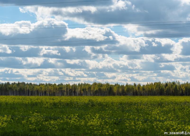 Смоленская область заняла 57 место в рейтинге кадастрового учёта