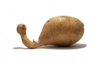 Заказывали радиационное мясо и картофель? В России будут облучать продукты